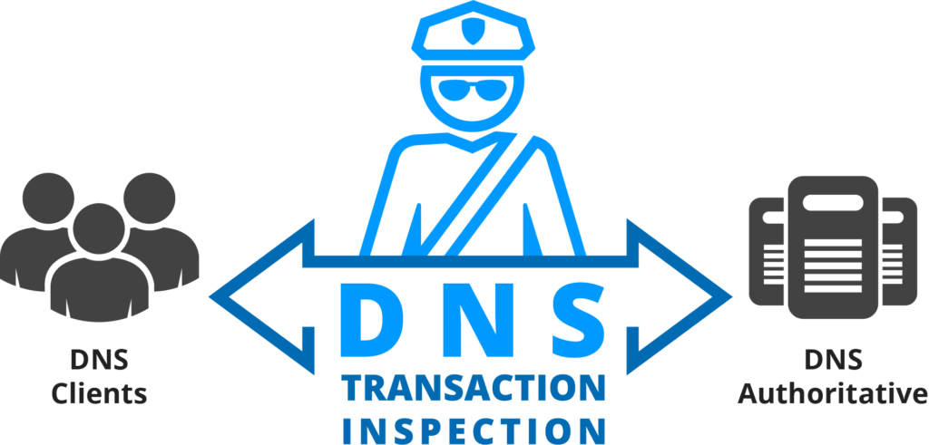 DNS_Guardian_Inspection