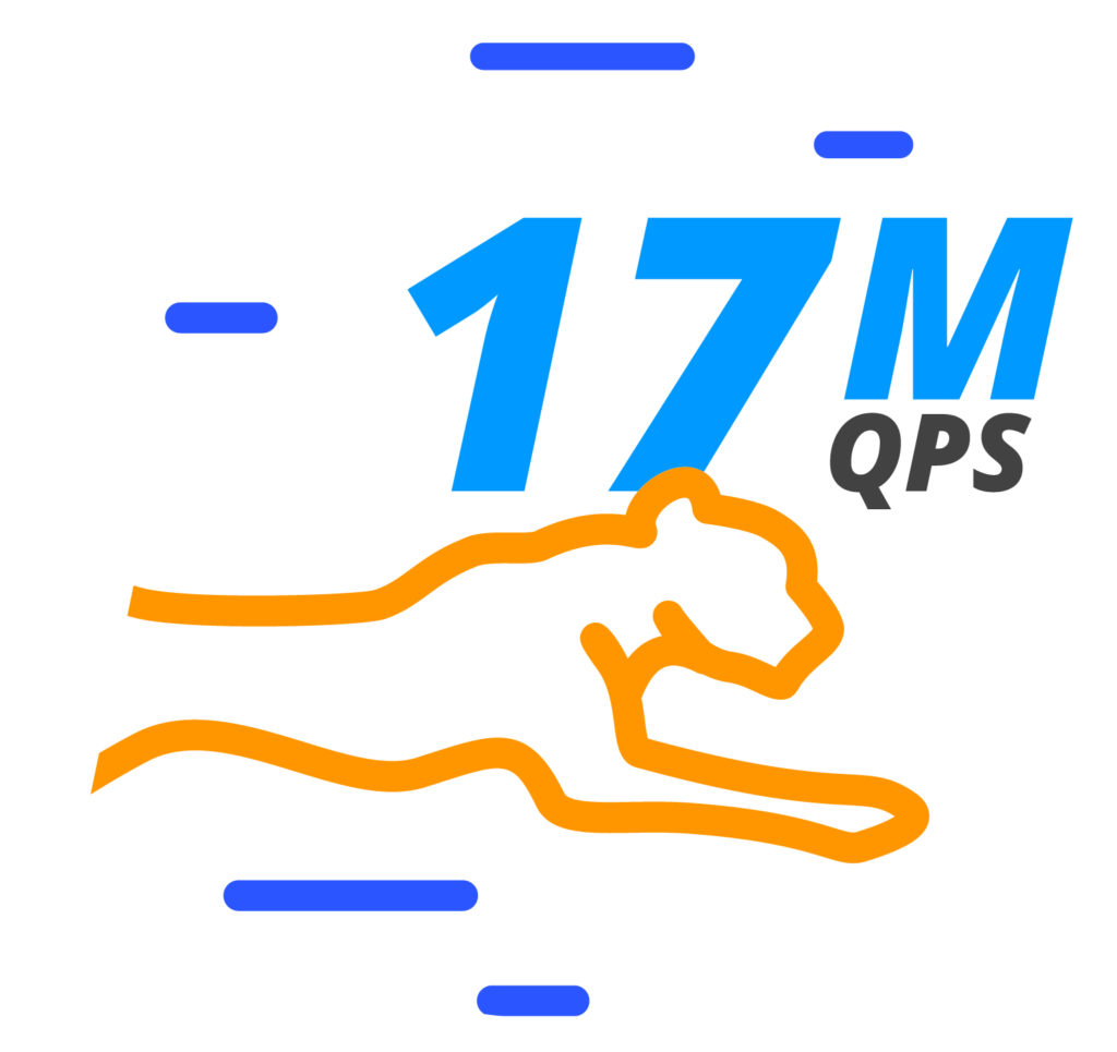World Fastest DNS_17Mqps_v2