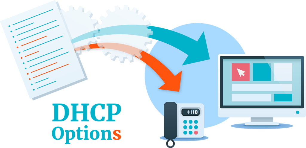 What is DHCP-DHCP options