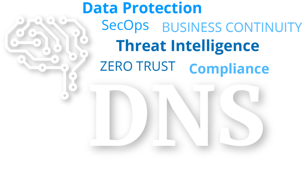 DNS_Global Enterprise Network Security