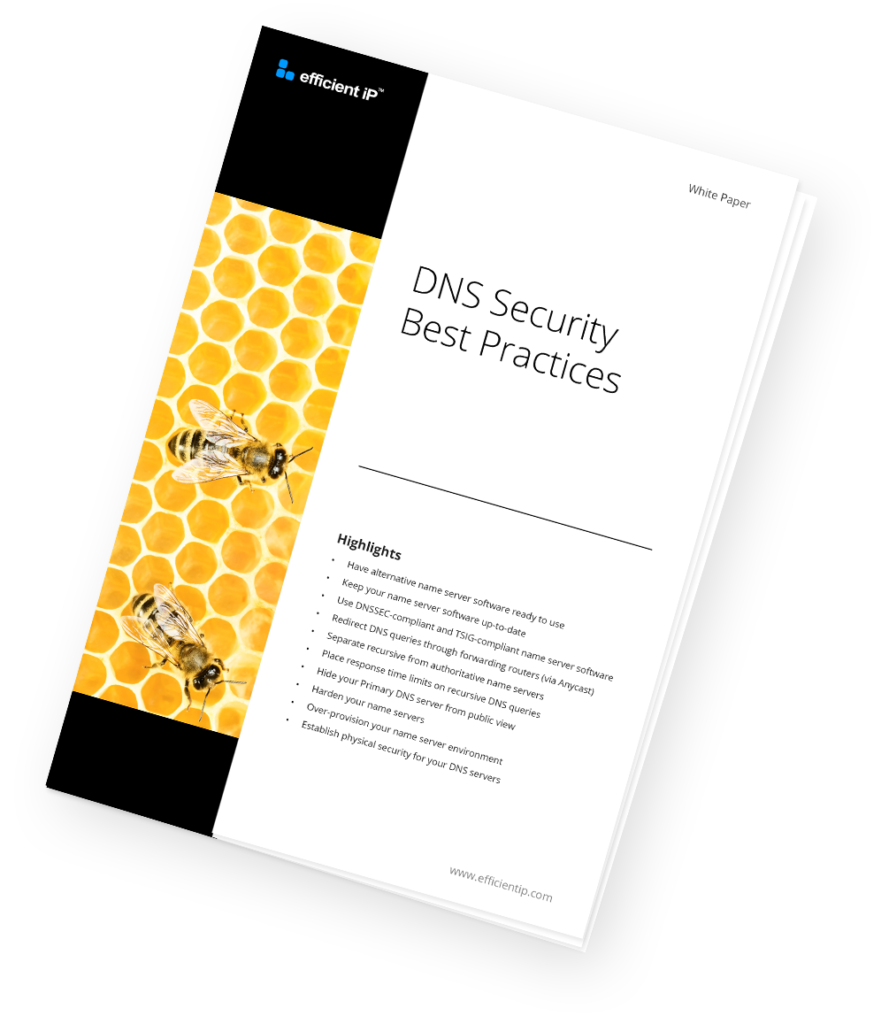 WP-DNS Security Best Practices-visual