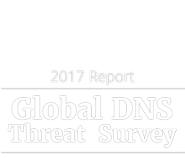 Slogan-DNS_Security_Survey_2806